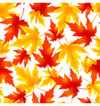 seamless pattern with colorful leaf fall vector image