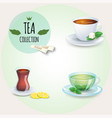 tea collection different styles cups and glass vector image