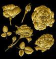 golden roses set vector image