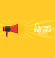 announcement megaphone on vintage pop art vector image vector image