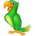 cartoon happy parrot posing cartoon happy parr vector image vector image