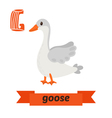 Goose G letter Cute children animal alphabet in vector image vector image