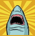 shark ocean predator marine fish and water parks vector image