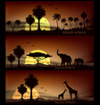 africa animal banner for facebook poster vector image