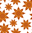 anise seamless background vector image vector image