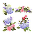 flowers collection herbal nature beautiful vector image