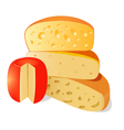 four different types of cheese on a white backgro vector image vector image
