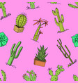home cactus plants with prickles and nature vector image vector image