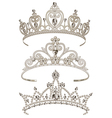 Shining Tiaras Set vector image