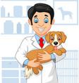 cartoon veterinarian doctor examining a puppy vector image vector image