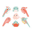 cute birds color set cartoon flat vector image vector image