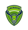 deer buck stag lacrosse crest vector image vector image