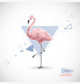 flamingo low poly style polygonal vector image