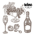 hand drawn bottle champagne with grape and wine vector image vector image
