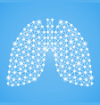 human lungs isolated on a blue background vector image vector image