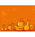 orange vintage background with fruit vector image vector image