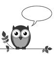 OWL TALK vector image vector image