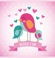 cute birds together celebration mothers day vector image vector image