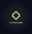star geometry abstract gold logo vector image vector image