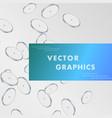 transparent coins pattern background vector image