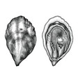 antique engraving oyster black and white clip vector image