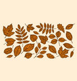autumn leaf fall concept decorative tree leaves vector image vector image