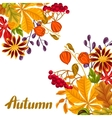 Card with autumn leaves and plants Design for vector image vector image