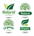 eco label 3 vector image