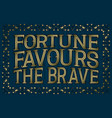 fortune favours the brave english saying vector image