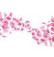 realistic rose cherry sakura petal vector image vector image