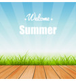 summer background wood grass vector image