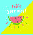 summer poster with watermelon and hand-lettering vector image