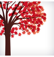 abstract background maple tree with branches made vector image