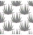 Agave succulent desert seamless pattern vector image