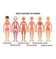 anatomy of the female body anatomical poster vector image vector image