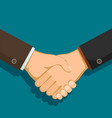 handshake of two businessmen vector image