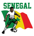 soccer player of senegal vector image vector image