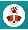 Veterinary dog care paw print icon