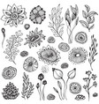 Collection of hand drawn fantasy nature elements vector image