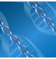dna background vector image vector image