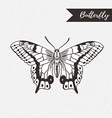 Hand drawn butterfly logo design element on the vector image vector image
