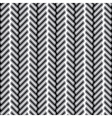 herringbone fur texture vector image vector image
