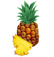 pineapple with slices isolated on white vector image