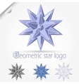 geometric star logo vector image