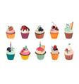 collection delicious cupcakes vector image