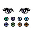 color contact lenses poster with female eyes vector image vector image