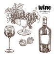 hand drawn wine bottle with grapes and wineglass vector image