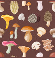 mushroom natural fungus and mushrooming vector image