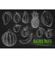 Natural fresh fruits chalk sketch on chalkboard vector image vector image
