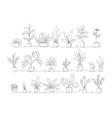 one line home plants continuous monoline pots vector image